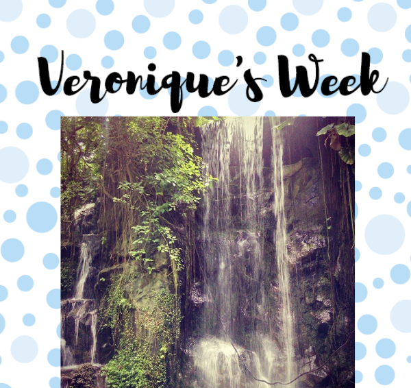 Veronique's Week #39: Zomerstop, Burgers' Zoo & The Lion King