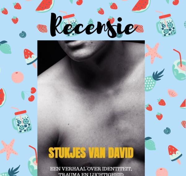 Recensie: Stukjes van David – Joris Hoekstra